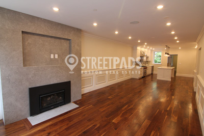 Pictures of  Apartment for Rent on Dwight St, Brookline, MA